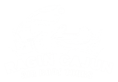 The Best Airboat Swamp and Bayou Tour in New orleans